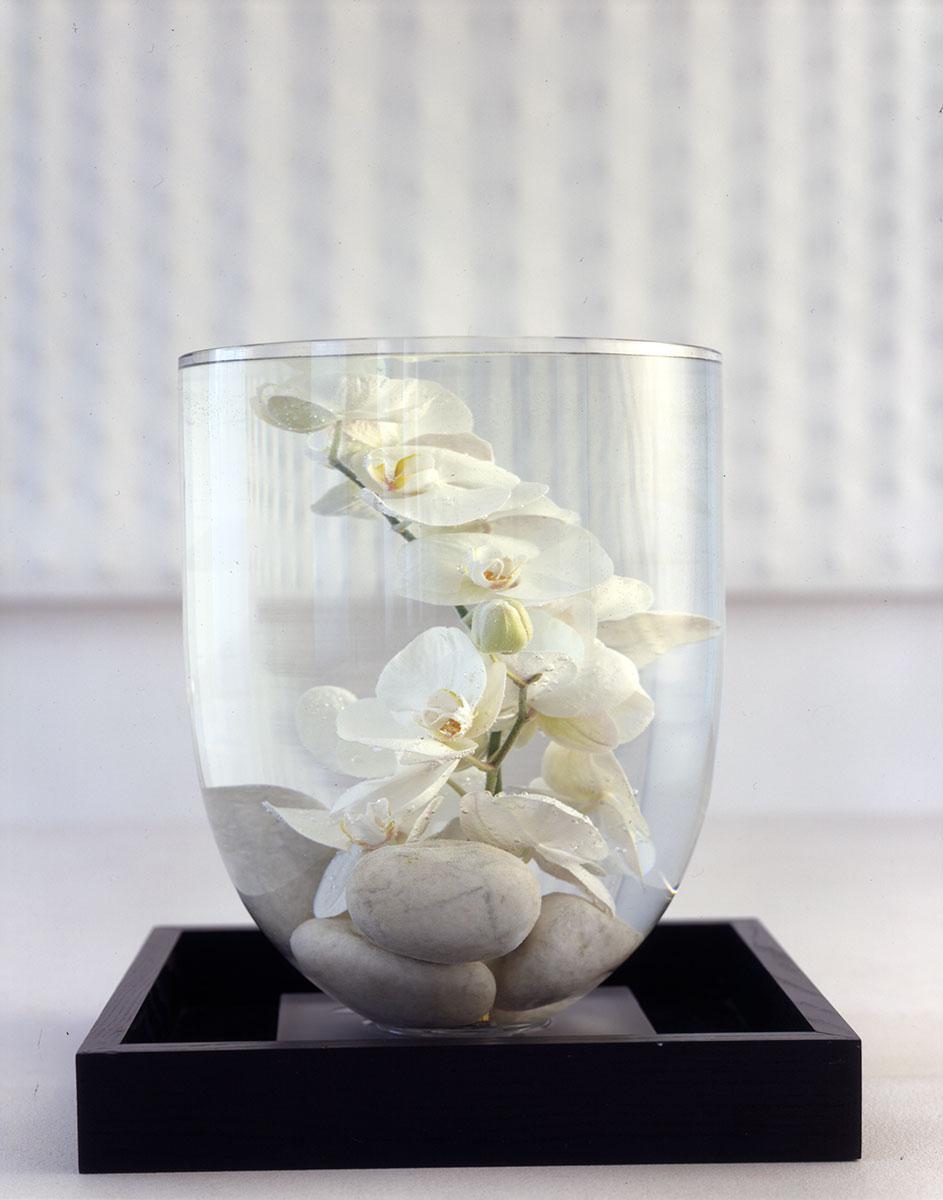 vaso-fiori-bianchi